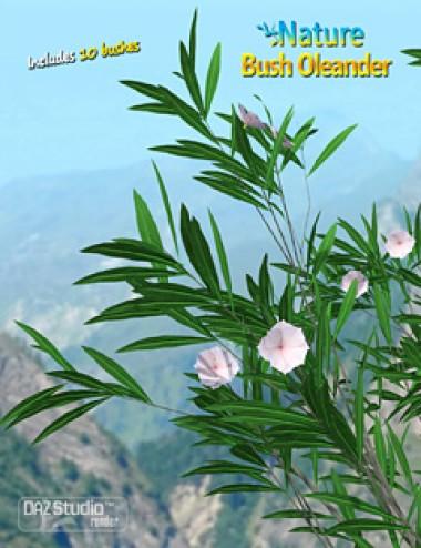 Nature- Bush Oleander