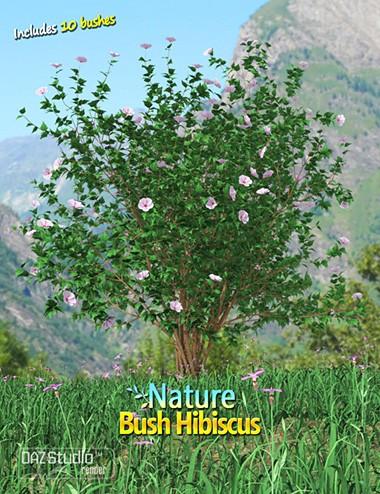 Nature- Bush Hibiscus