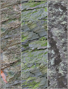 DAZ Studio 4 Cliff Face Shaders