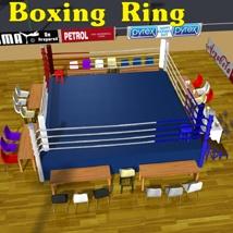 Stadium Boxing Ring