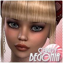 Candy Begonia