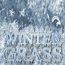 Flinks Winter Grass
