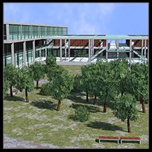College, Campus scene