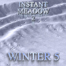Flinks Instant Meadow 2- Winter 5