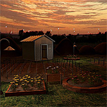 SG1-Skys & Gardens