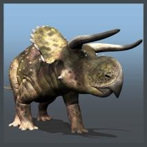 Nasutoceratops DR