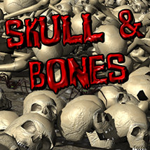 Flinks Instant Meadow 2- Skull&Bones