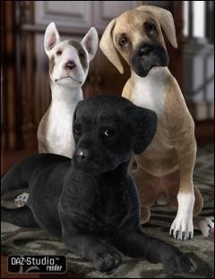 Millennium Puppy