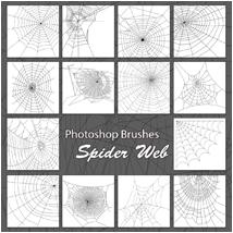 PB- Spider Web