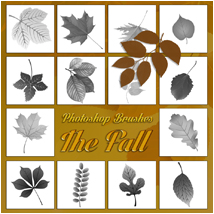 PB- The Fall