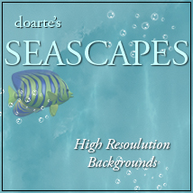 doarte's SEASCAPES