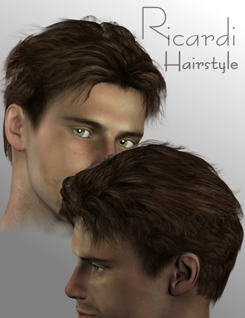 Ricardi Hairstyle 3d Models For Daz Studio And Poser
