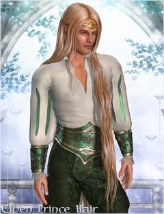 Elven Prince Hair