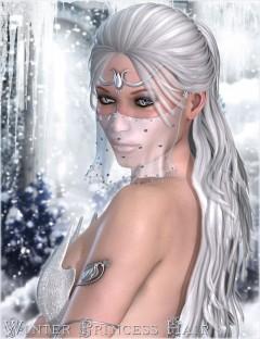 Winter Princess Hair