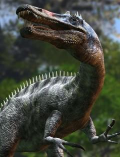 Suchomimus tenerensisDR