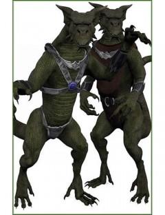 Millennium Dragon Folk