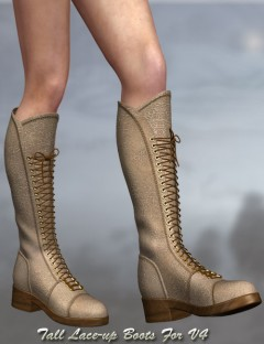 Tall Lace-up Boots For V4