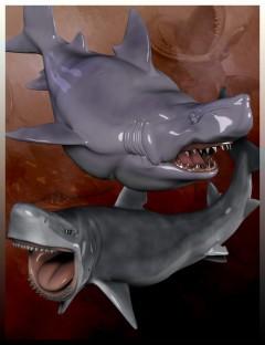 Toonimal Sharks