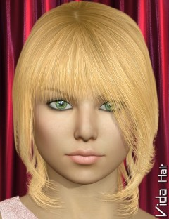 Vida Hair