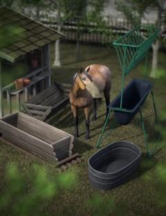 Equestrian Props