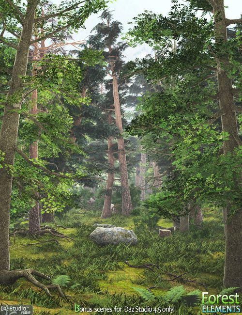 Forest Elements