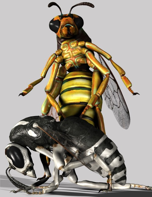 Insect-I-Vore 'The Wasp' | Inspects and Spiders for Daz Studio and ...