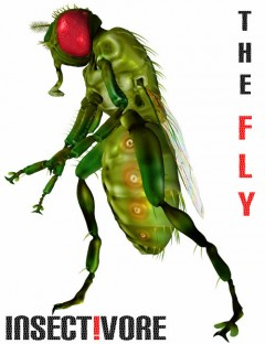 Insect-I-Vore 'The Fly'