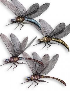 Noggin's Dragonfly