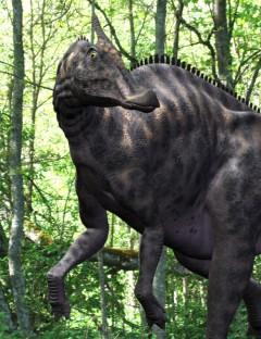 SaurolophusDR