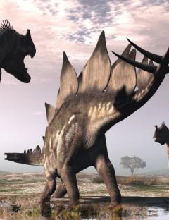 StegosaurusDR