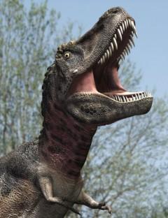 TarbosaurusDR