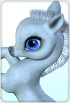 The Unicorn: Bits & Bobs