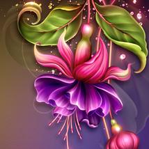 Moonbeam's Fuchsia Pea