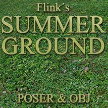 Flinks Summer Ground