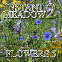 Flinks Instant Meadow 2 - Flowers 5