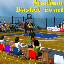 Stadium Basketball court
