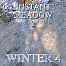 Flinks Instant Meadow 2 - Winter 4