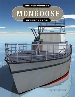 Mongoose Interceptor