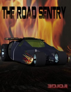 The Road Sentry