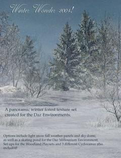 Winter Wonder 2004