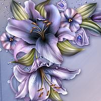 Moonbeams Wynter Lilies