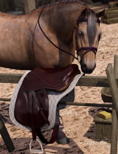 English Saddle for DAZ Horse 2