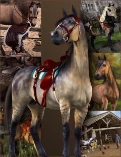 DAZ Horse 2 Starter Bundle