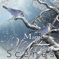 Magic Winter Scenes