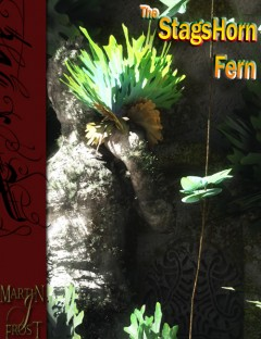 The Stags Horn Fern
