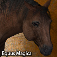 Equus Magica For the Millennium Horse