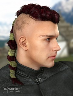 Colors for Viking Male Hair