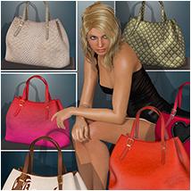 Lovelies for Handbag I