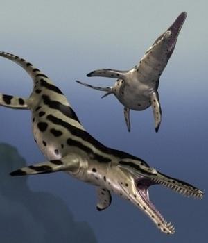 Kronosaurus DR