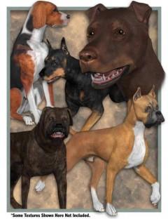 Millennium Dog Starter Pack